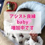 アシスト良縁baby増加中です
